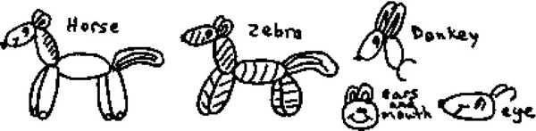 Horse Zebra Donkey